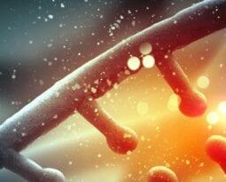genetic strand