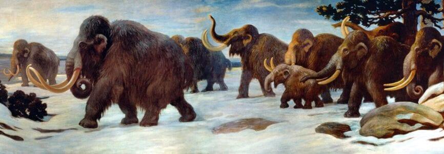 """Illustrative image for """"De-Extinction"""": Restoring Nature?"""