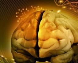 braingenethics