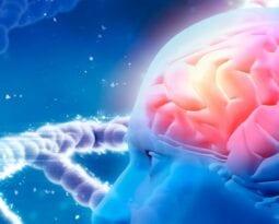 genetic-brain